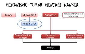 obat tumor otak